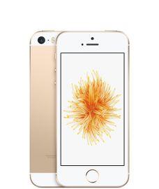 iphonese_gold3